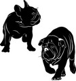 silhouettes dogs french bulldog vector image