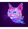 The cute colored cat head vector image vector image