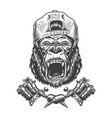 vintage ferocious gorilla head in cap vector image vector image