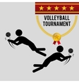 Volleyball design Sport icon Isolated vector image vector image