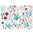 wild flowers herbs and field plants set vector image