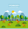forest and animals wildlife natural vector image