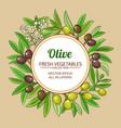 olive frame vector image vector image