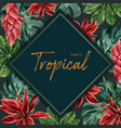tropical-themed frame design with monstera leaves vector image vector image