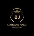 bj letter initial with royal luxury logo template vector image vector image