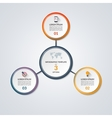 Infographic circle diagram template with 3 options vector image