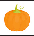 orange pumpkin cartoon style vector image