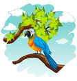Parrot standing on branch vector image vector image