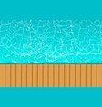 sea coast wood vector image vector image