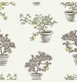 seamless pattern of lemon trees in the flowerpots vector image
