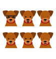 set isolated emotion puppy dog collection vector image vector image