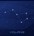 constellation volans flying fish night star sky vector image vector image