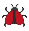 cute ladybug isolated vector image