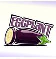 eggplant still life vector image vector image