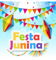 festa junina background vector image