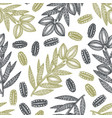 hand drawn pecan branch and kernels seamless vector image vector image
