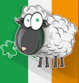 irish shepp cartoon on flag vector image vector image
