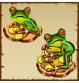 Two frog on a pile of coins FengShui talisman vector image vector image