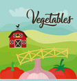 vegetables fresh farm harvest product diet vector image