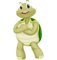 Animated turtle vector image