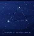 constellation triangulum australe triangle vector image vector image