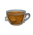 cup tea with tea bag sketch engraving vector image vector image