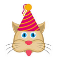 cute cat with a party hat avatar vector image vector image