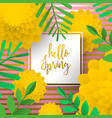 hello spring greeting card with nature decoration vector image