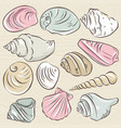 set of different types of clams and shells vector image vector image