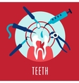Teeth and dentistry concept vector image vector image