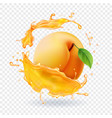 apricot in juice splash realistic fruit vector image