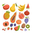 big fruit set modern flat vactor design isolated vector image vector image