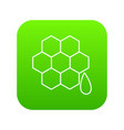 honeycomb icon green vector image vector image