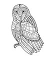 owl hand drawn for coloring book vector image vector image