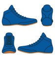 set with blue wrestling shoes vector image vector image