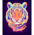 The cute colored tiger head vector image vector image