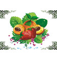 still life - apricots and strawberries on green vector image
