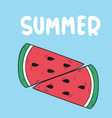 summer two pieces watermelon blue background vector image