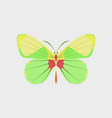 colorful icon of butterfly isolated on white vector image