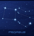 constellation pegasus winged horse vector image vector image