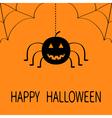 Cute cartoon black smiling pumpkin Hanging spider vector image vector image