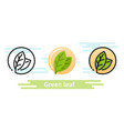 green leaf icon eco symbol vector image