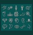 human body anatomy organs health icons collection vector image vector image
