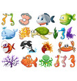large set sea creatures on white background vector image vector image