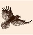 raven in flight vector image