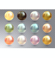 realistic varicoloured pearls set on vector image vector image