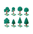 set trees plants mini isometric icons vector image