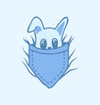 bunny pants pocket vector image