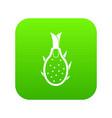 dragon fruit icon digital green vector image vector image
