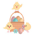 eggs painted in basket with little chick happy vector image